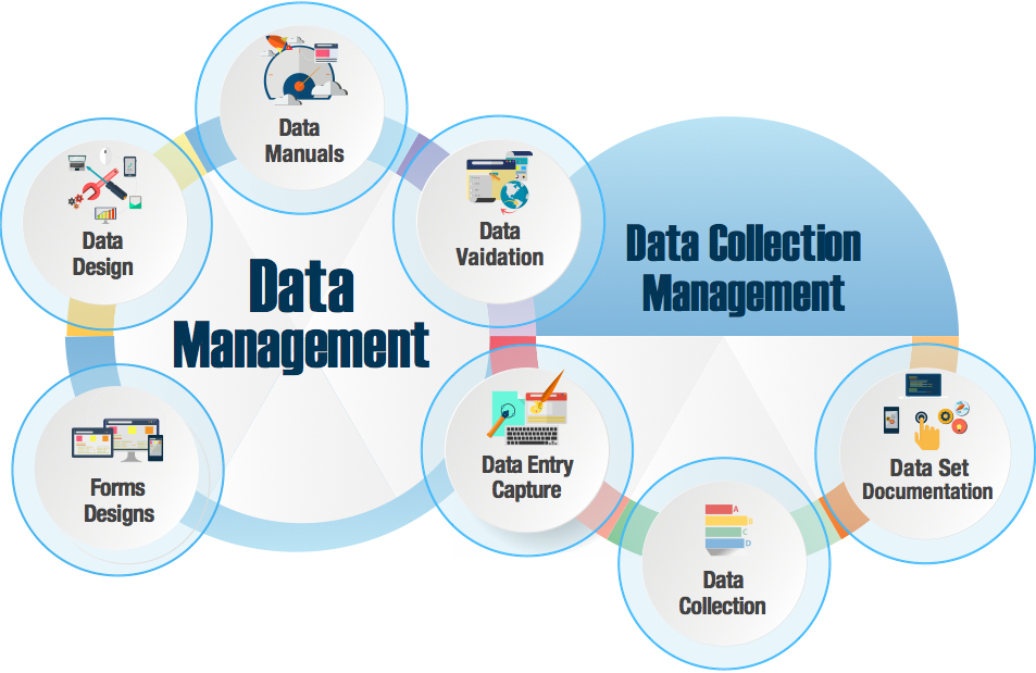 Data Collection, Data Entry & Data Management